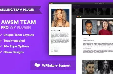 WPlocker-The Team Pro v1.4.2 - WordPress Plugin!